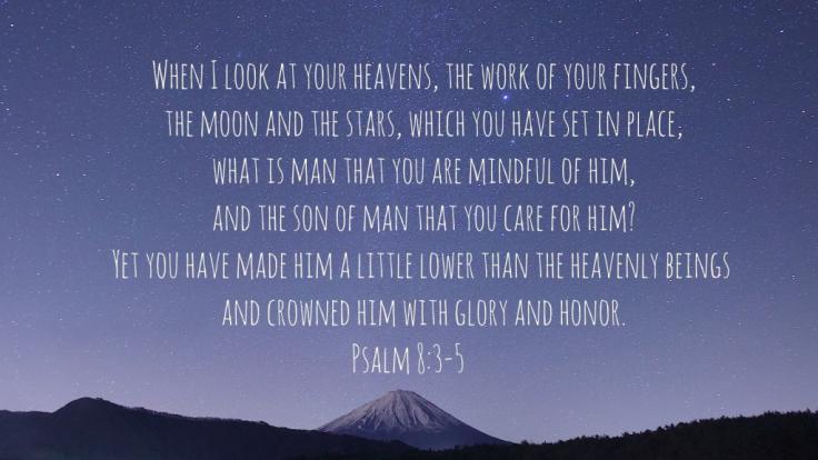 psalm 8 3 5